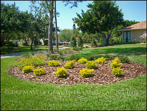 Landscape Bed Maintenance